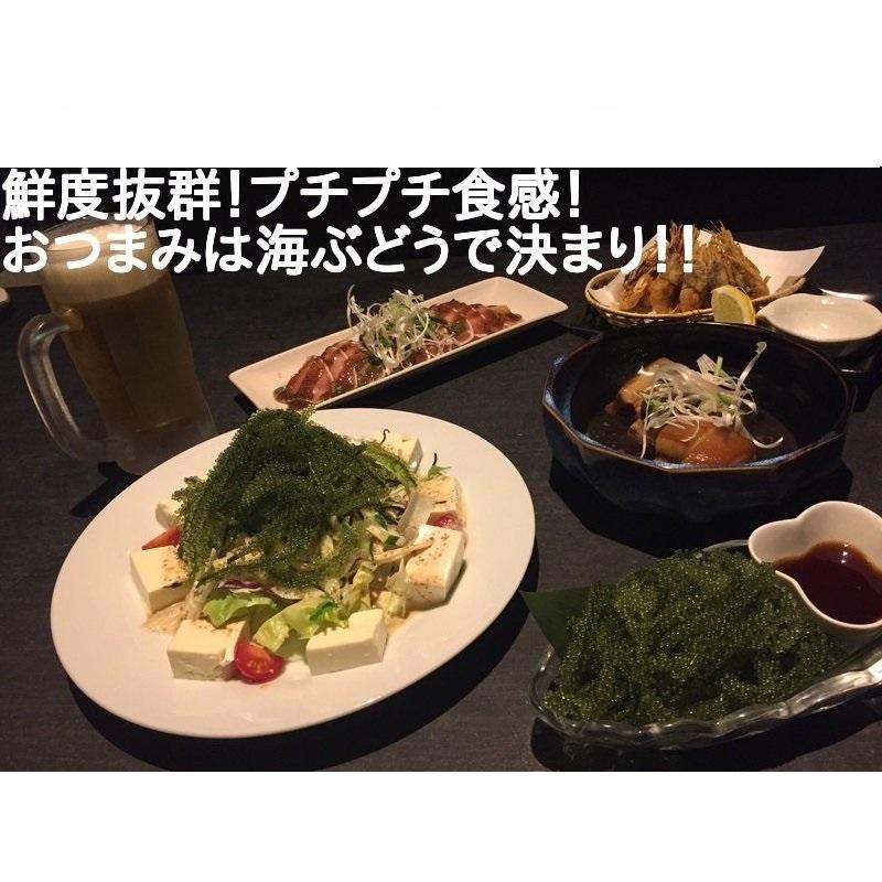 海ぶどう 沖縄 久米島産海ぶどう (100g) 海洋深層水 で有名な久米島産海ぶどう100% ポイント消化 食品 おすすめ|mejapon|05