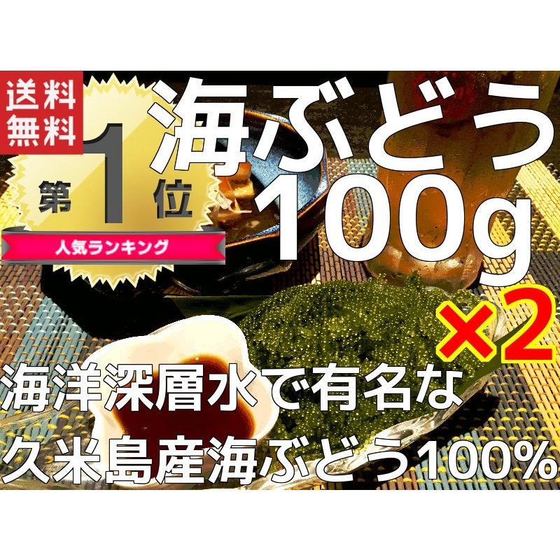 海ぶどう 沖縄 久米島産海ぶどう(100g)×2個セット 海洋深層水 で有名な久米島産海ぶどう100% お土産 ポイント消化 食品|mejapon