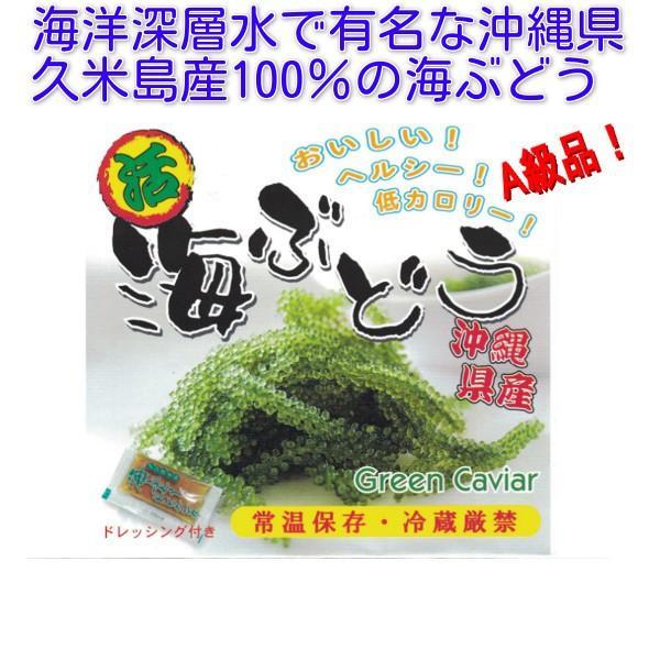 海ぶどう 沖縄 久米島産海ぶどう(100g)×2個セット 海洋深層水 で有名な久米島産海ぶどう100% お土産 ポイント消化 食品|mejapon|04