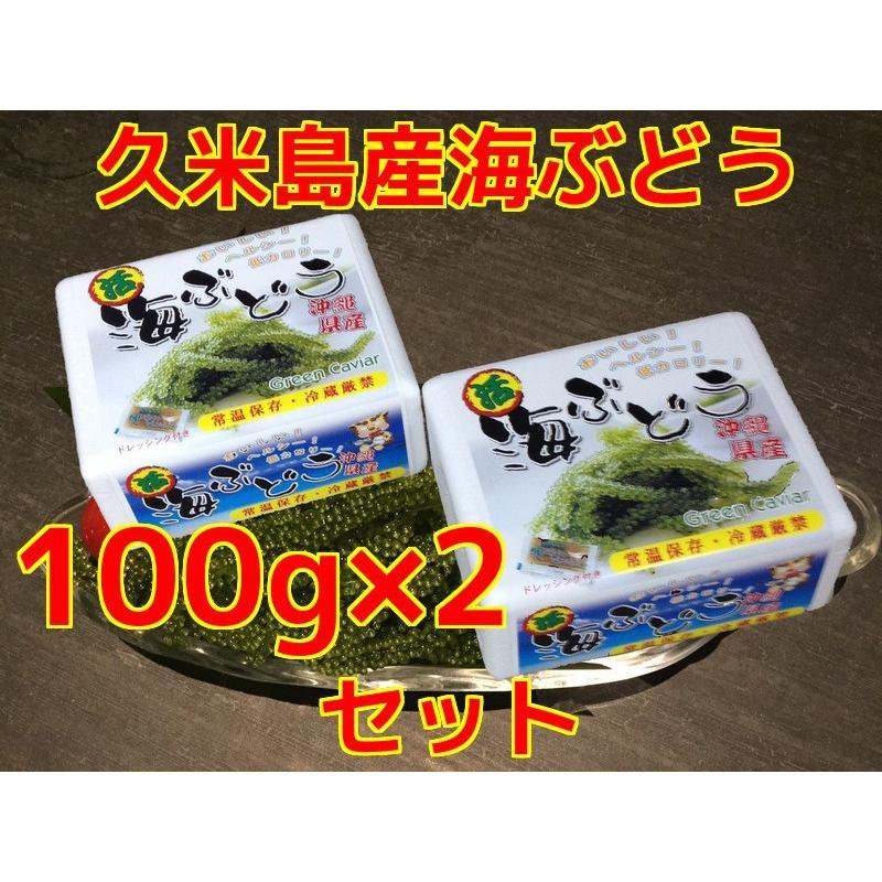 海ぶどう 沖縄 久米島産海ぶどう(100g)×2個セット 海洋深層水 で有名な久米島産海ぶどう100% お土産 ポイント消化 食品|mejapon|06