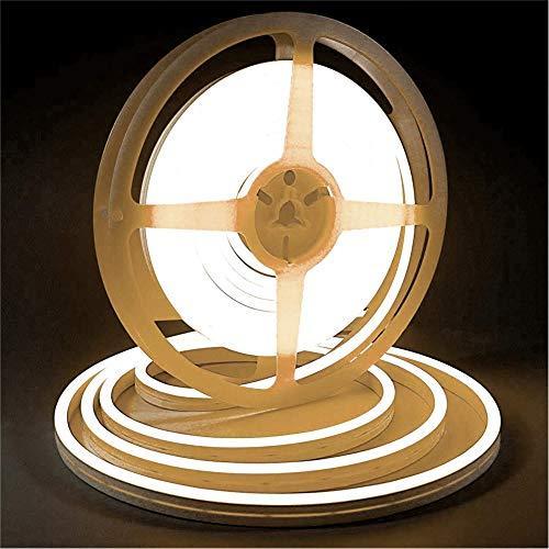 iNextStation LEDネオンライト 12V 5m SMD 2835 120LEDs/m 高輝度 防水 調光可能 切断可能 (電源アダプタ含ま