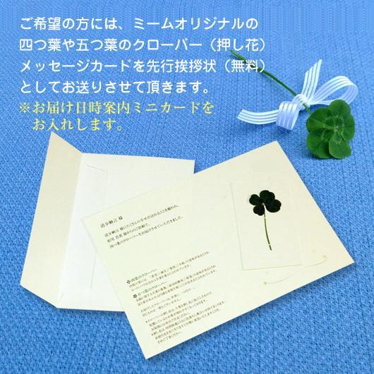 父の日 プレゼント 銀座千疋屋 ギフト 焼菓子 銀座フルーツクーヘン 16個 内祝 お祝い 出産 結婚 誕生日 快気 御礼 お菓子|meme|04