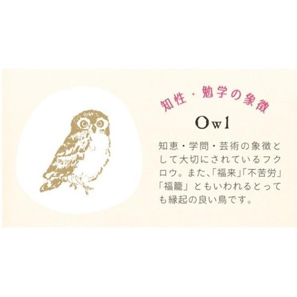 フクロウ 象徴