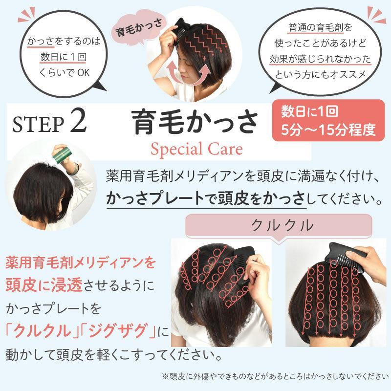 育毛かっさスターターセット 初回限定お試し価格 頭皮用かっさプレートをプレゼント中 育毛剤 かっさ 男性用 女性用|meridian|11