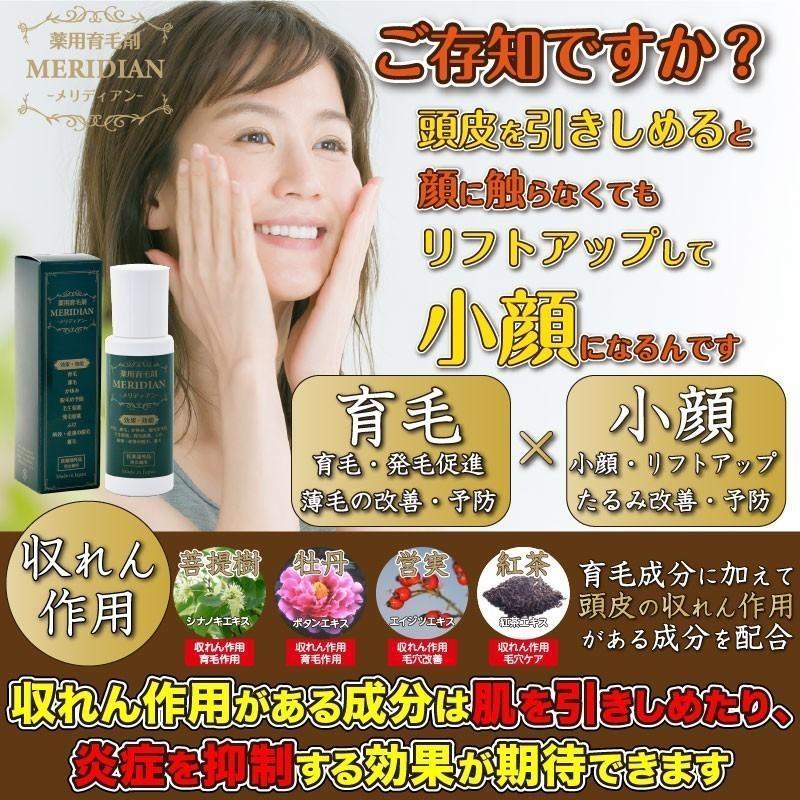 薬用育毛剤 MERIDIAN-メリディアン-(医薬部外品)3本セットで25%off・送料無料 男性用 女性用 meridian 10