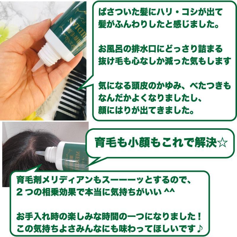 薬用育毛剤 MERIDIAN-メリディアン-(医薬部外品)3本セットで25%off・送料無料 男性用 女性用 meridian 16