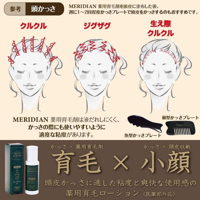 薬用育毛剤 MERIDIAN-メリディアン-(医薬部外品)3本セットで25%off・送料無料 男性用 女性用 meridian 19