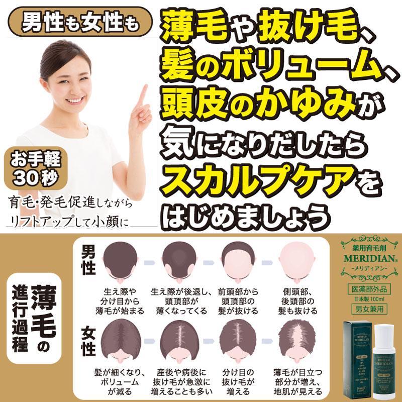 薬用育毛剤 MERIDIAN-メリディアン-(医薬部外品)3本セットで25%off・送料無料 男性用 女性用 meridian 04
