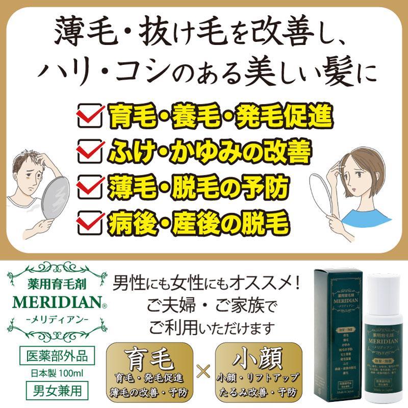 薬用育毛剤 MERIDIAN-メリディアン-(医薬部外品)3本セットで25%off・送料無料 男性用 女性用 meridian 05