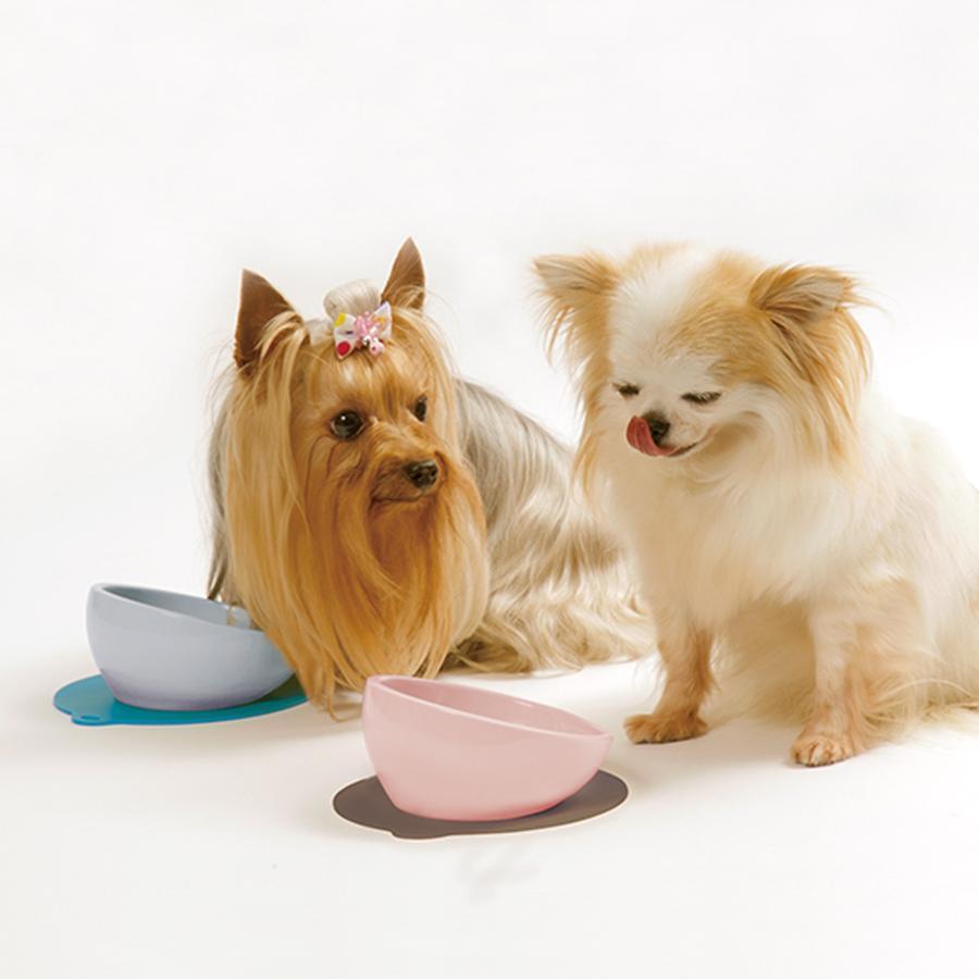 ハリオ チビプレ ホワイト HARIO 犬 食器 餌入れ フードボウル 陶器 犬用 えさ入れ 食べやすい こぼれにくい 斜め 小型犬 電子レンジ可 おしゃれ 日本製|merland|02