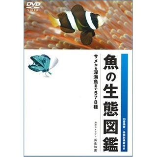 協和設計事務所 魚の生態図鑑