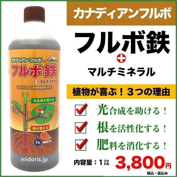 カナディアンフルボ鉄プラスマルチミネラル1kg 植物成長促進活力剤 液剤 液肥 グランドカバーにおすすめ midoris
