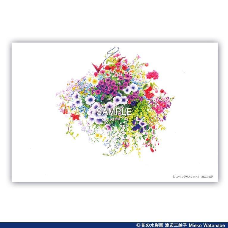 渡辺三絵子 花の水彩画 ポストカード12枚セット|mieko-watanabe|02