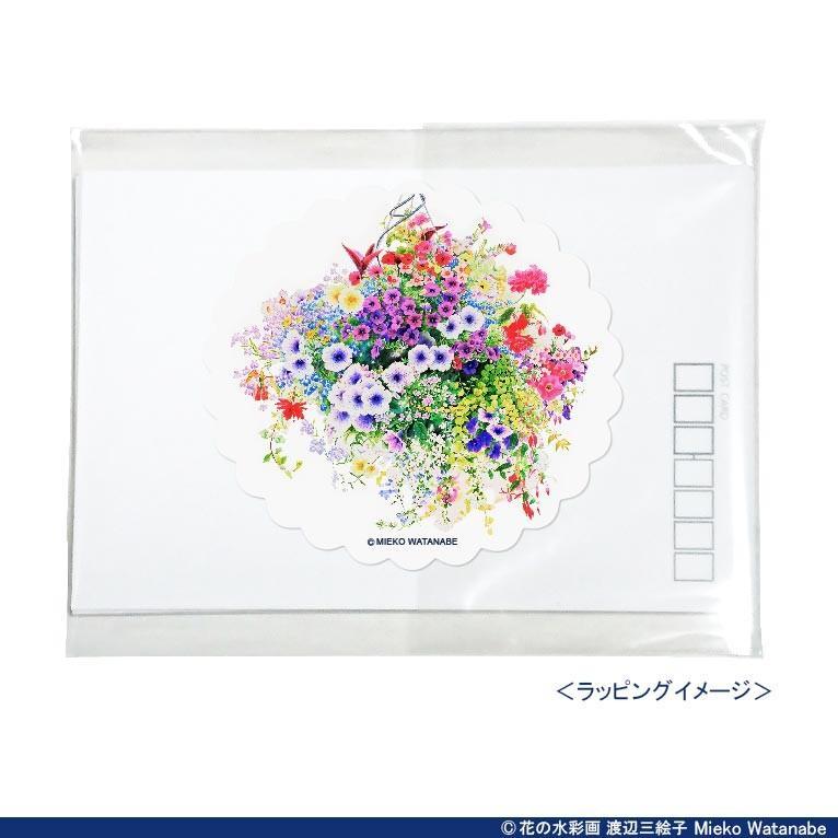 渡辺三絵子 花の水彩画 ポストカード12枚セット|mieko-watanabe|14