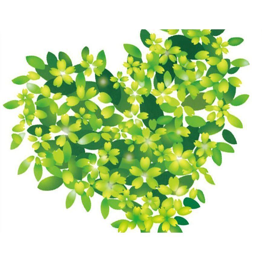ウォールステッカー インテリア雑貨 壁紙 クローバー 緑 蝶 模様替え
