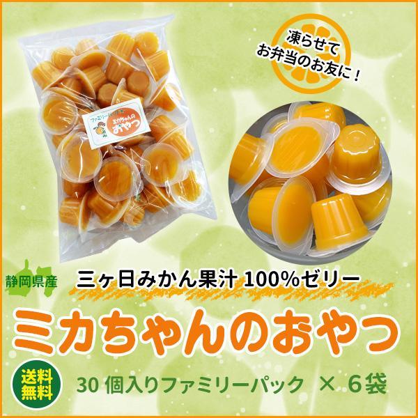 ミカちゃんのおやつ 日本全国 送料無料 売店 ファミリーパック 30個入×6袋