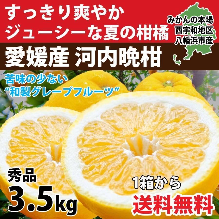 河内晩柑 秀品 3.5kg 美生柑 みかん お気に入 ジューシー 和製 直送 愛媛 セール価格 グレープフルーツ オレンジ 旬 贈答