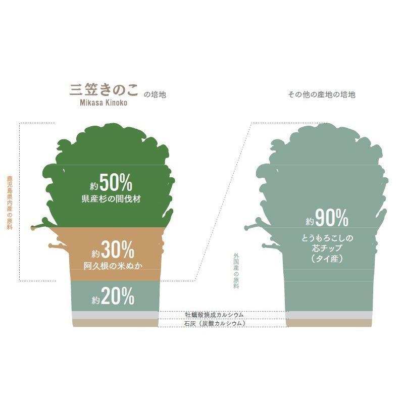 乾燥えのき(白)パウダー  EATY−JOG 食べるジョギング (150g)|mikasa-kinoko|05