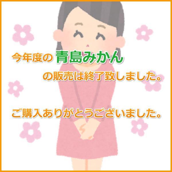 三ケ日みかん贈答用青島Lサイズ(5kg) mikkabimikan 02