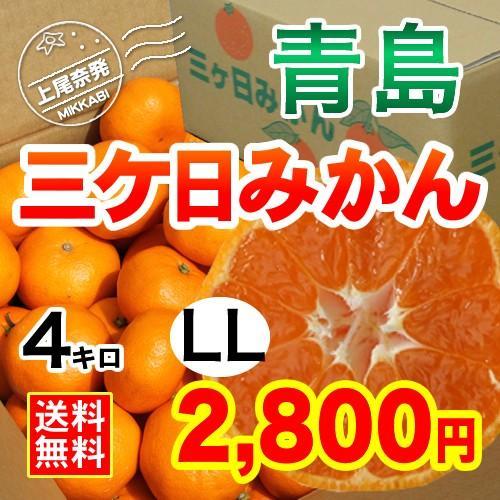 三ケ日みかん贈答用青島LLサイズ(4kg) mikkabimikan