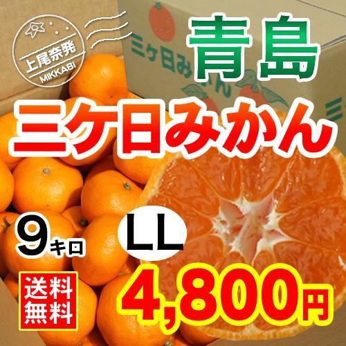 三ケ日みかん贈答用青島LLサイズ(9kg) mikkabimikan