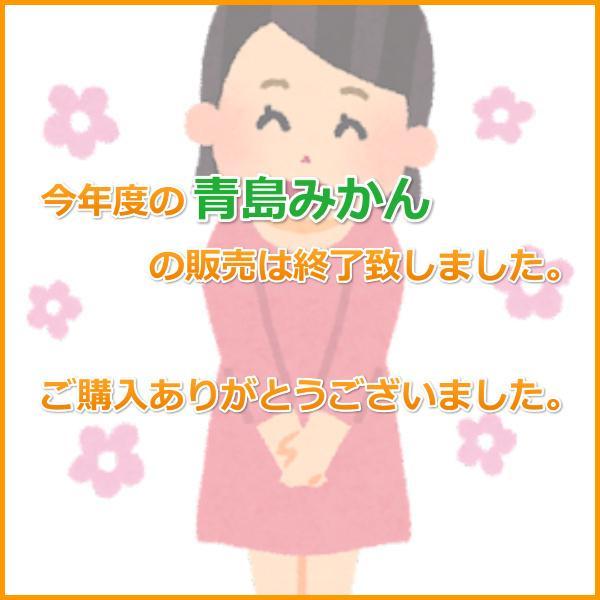 三ケ日みかん贈答用青島Mサイズ(5kg)|mikkabimikan|02