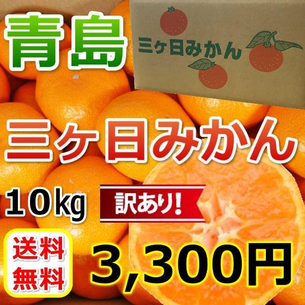 三ケ日みかん 青島 訳ありみかん (不揃い)(10kg)|mikkabimikan