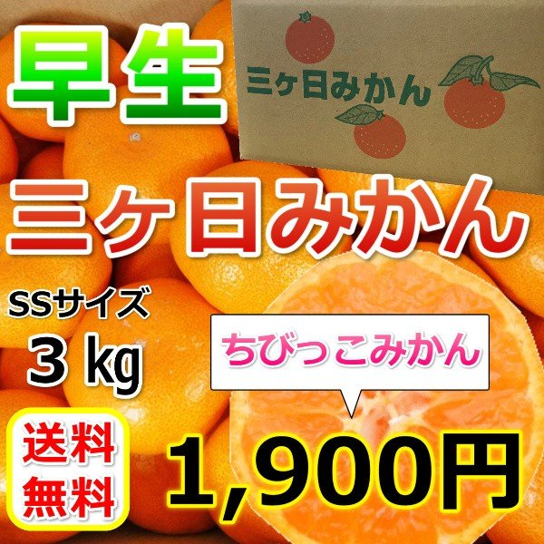 みかん 三ケ日みかん 早生 ちびっこみかん(SSサイズ)(3kg)|mikkabimikan