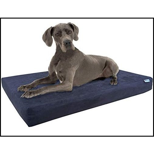 【新品】Dogbed4less Orthopedic Memory Foam Pet Bed with Waterproof Internal Case + 2 Washable Microsuede Espresso External Cover for Lar