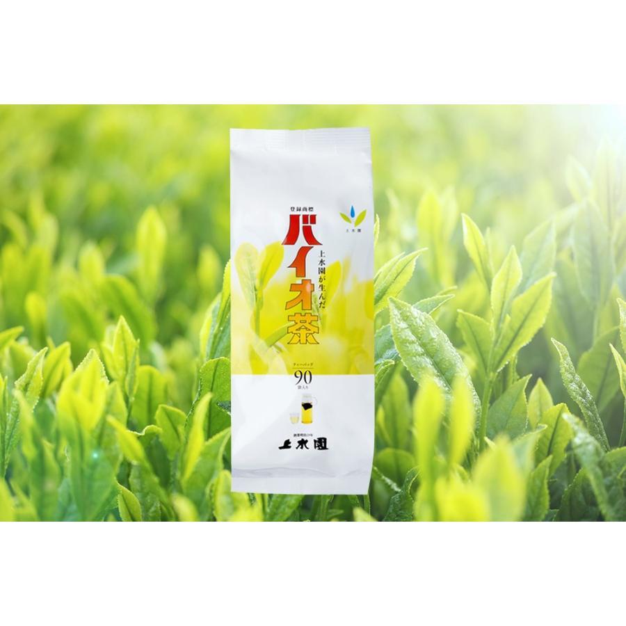 バイオ茶【水出しティーパック】大袋(3g×90パック入)|mimatan