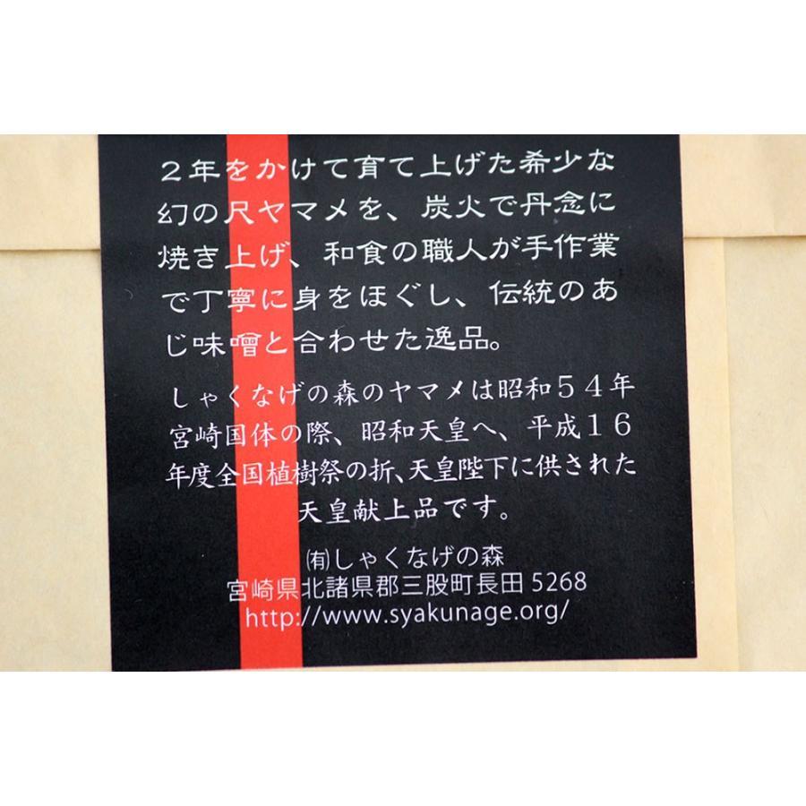 幻のご飯味噌(ピリ辛味)|mimatan|06