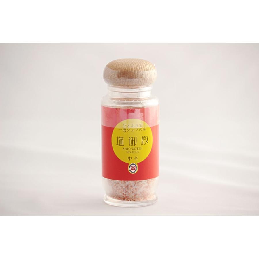 塩御殿(中辛)大瓶80g|mimatan