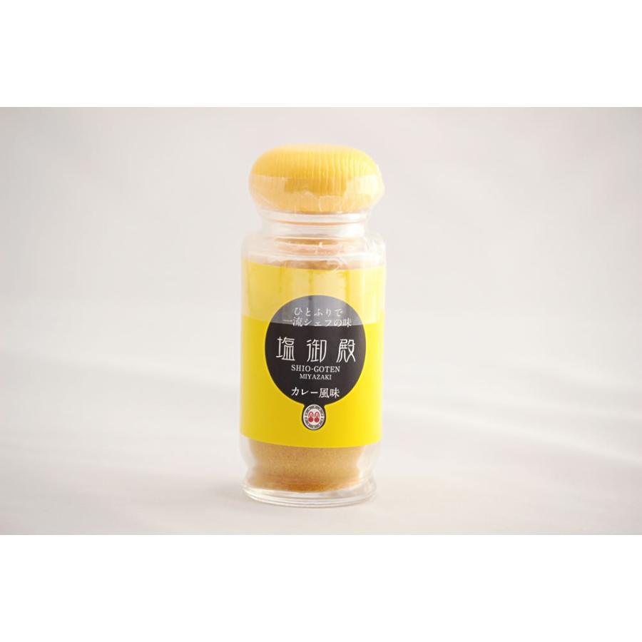 塩御殿(カレー風味)大瓶70g|mimatan