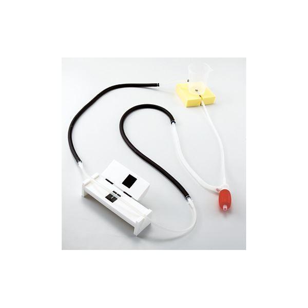 ポイント15倍血圧測定原理学習用シミュレーター/看護実習モデル 「けつあつくん」 軽量・コンパクト M-154-0〔代引不可〕送料無料