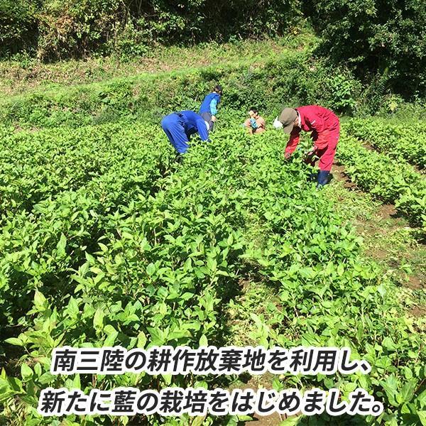 南三陸 藍染め手ぬぐい 手染め 手拭い ネコポスOK 返礼品 贈答品 藍監査室|minamisanriku-hukko|05