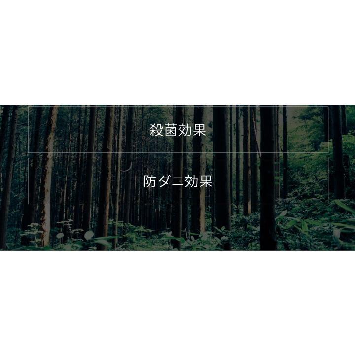 すのこベッド シングル  ひのき 頑丈 棚付 島根県産高知四万十産ヒノキのすのこベッド(TCB245-s 7024501)|minamoto-bed|12