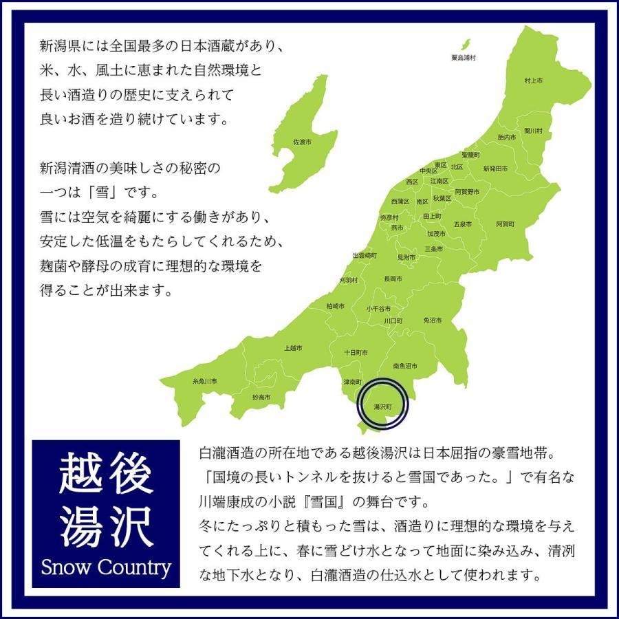 日本酒 新潟 白瀧酒造 ロック酒の上善如水 純米 720ml|minatoya|21