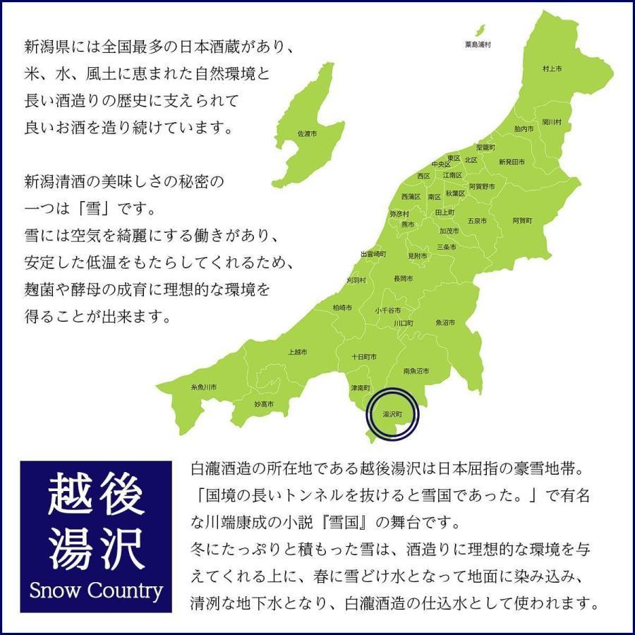 白瀧酒造 純米酒ギフトセット 720ml×3本入り minatoya 12