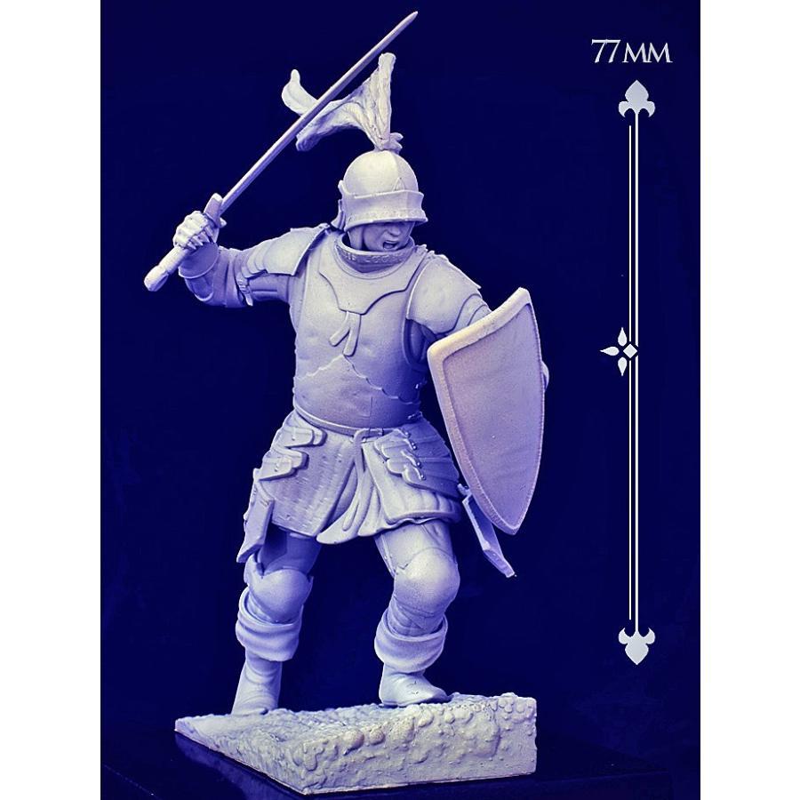 タンネンベルクの戦い 1410年 Grunwald 1410 70mm[HAM-HA14] :HAM-HA14 ...