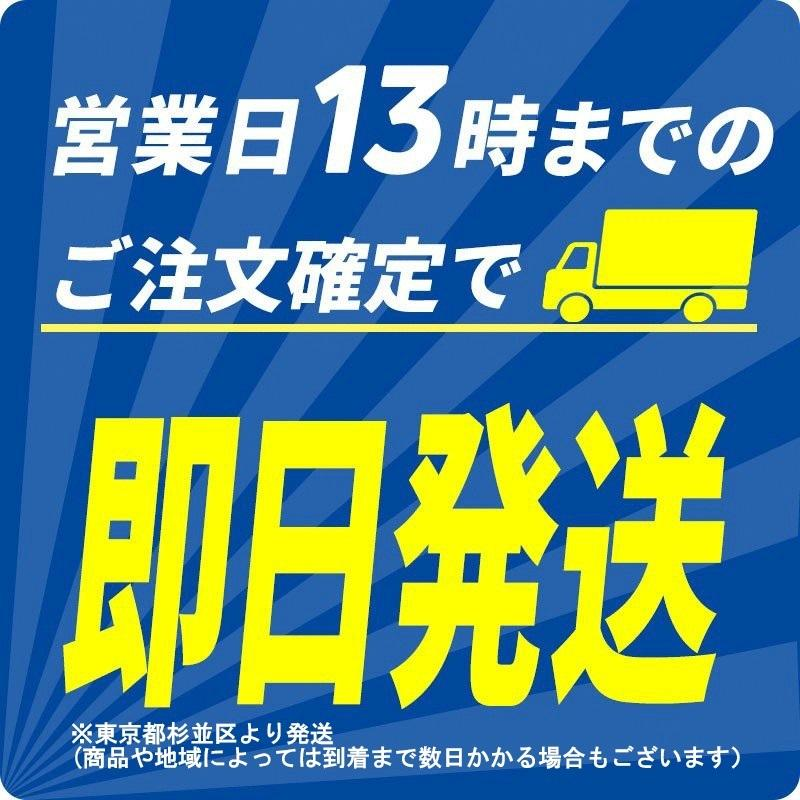 ホカロン 貼る 10個 5個セット|minoku-max|02