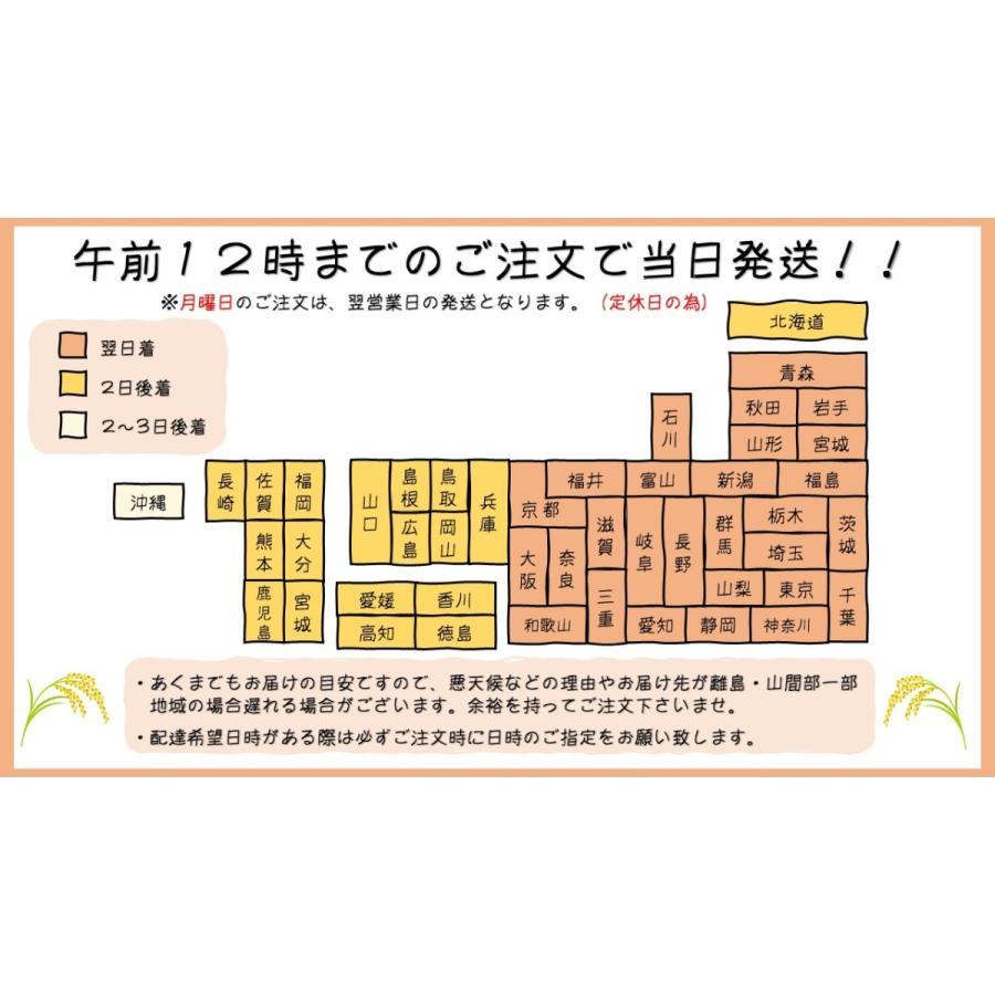 令和2年産 福島県産コシヒカリ 玄米30kg 「ふくしまプライド。体感キャンペーン(お米)」  ポイント消化 送料無料   minoriya777 05