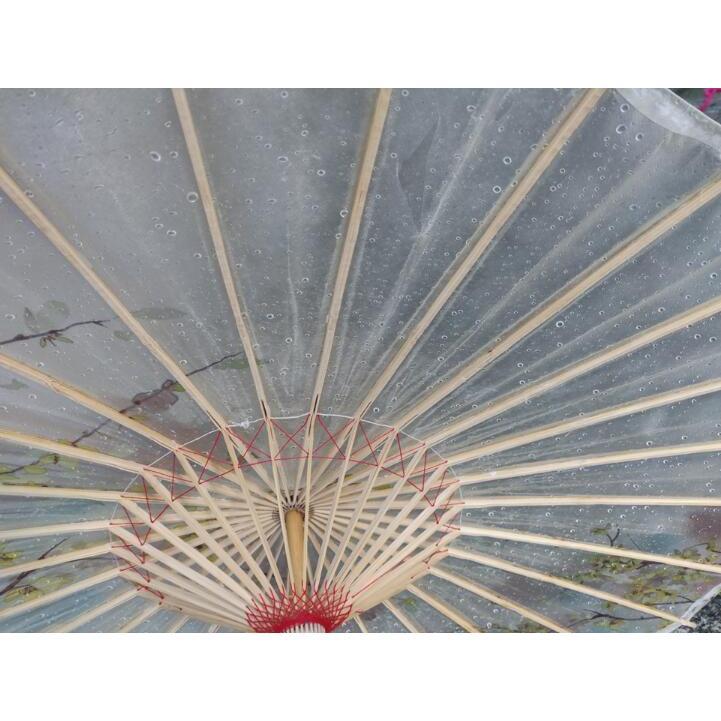 傘和傘番傘紙傘舞踊傘唐傘和装和風晴雨兼用長傘|minto|08