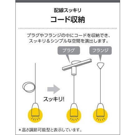 コイズミ照明 AP50351 ペンダントライト フランジ 40W相当 電球色|miraino-yume|02