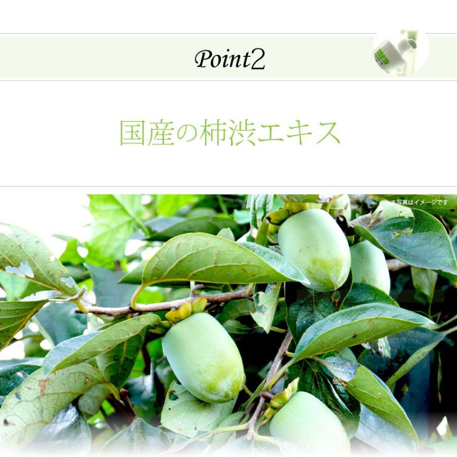 「初回限定 お試しセット」 伝統爽快 なた豆歯磨き粉 (120g) 柿渋配合 人気 口臭 スッキリ すっきり なたまめ歯磨き粉 おまけ付|mitsubachi-road|06