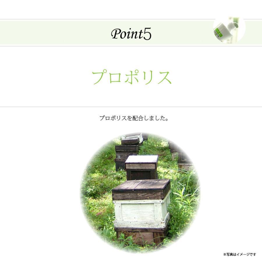 「初回限定 お試しセット」 伝統爽快 なた豆歯磨き粉 (120g) 柿渋配合 人気 口臭 スッキリ すっきり なたまめ歯磨き粉 おまけ付|mitsubachi-road|09