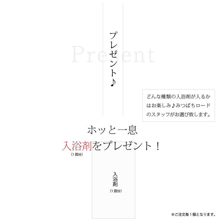 「初回限定 お試しセット」 伝統爽快 なた豆歯磨き粉 (120g) 柿渋配合 人気 口臭 スッキリ すっきり なたまめ歯磨き粉 おまけ付|mitsubachi-road|10