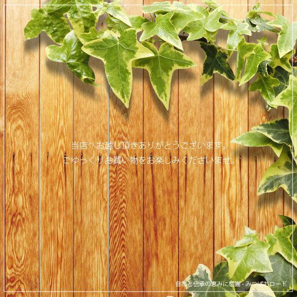 「お手軽 200円」 泡立てネット バブルリッチ(90×120mm) 白 袋型 国内生産 国内加工|mitsubachi-road|02