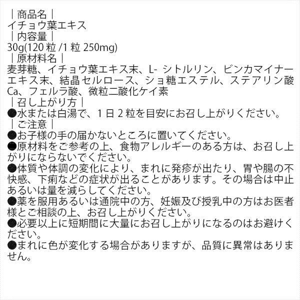イチョウ葉エキス (120粒) 藤井養蜂場 「5250円以上で送料無料」|mitsubachi-road|02