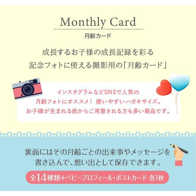 月齢カード パーティー 16枚セット マンスリーカード はがきサイズ 出産祝い フォト 出産準備 ハーフバースデー 記念日|mitsuboshigoods|02