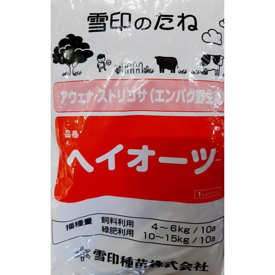 アウェナ ストリゴサ種 ヘイオーツ 1kg 激安格安割引情報満載 エンバク種 雪印種苗 本日限定 牧草種子 えん麦種